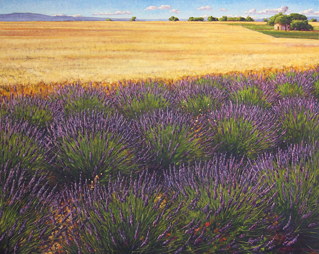 Lavender En Plein Air by Caroline Zimmermann